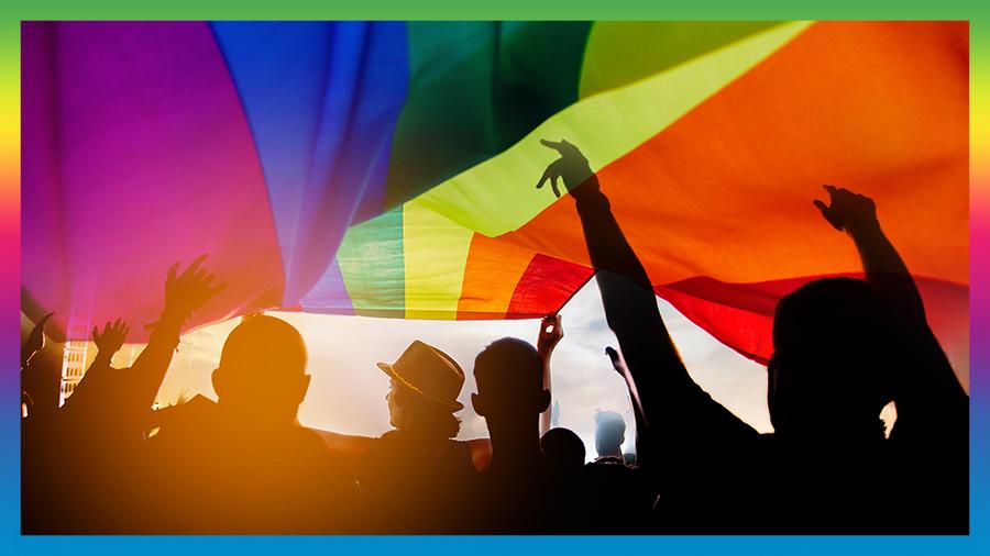 LGBT community flag