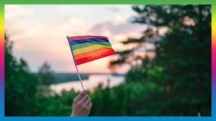 Parent flying LGBT Flag